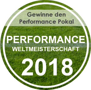 IT-Performance Weltmeisterschaft 2018